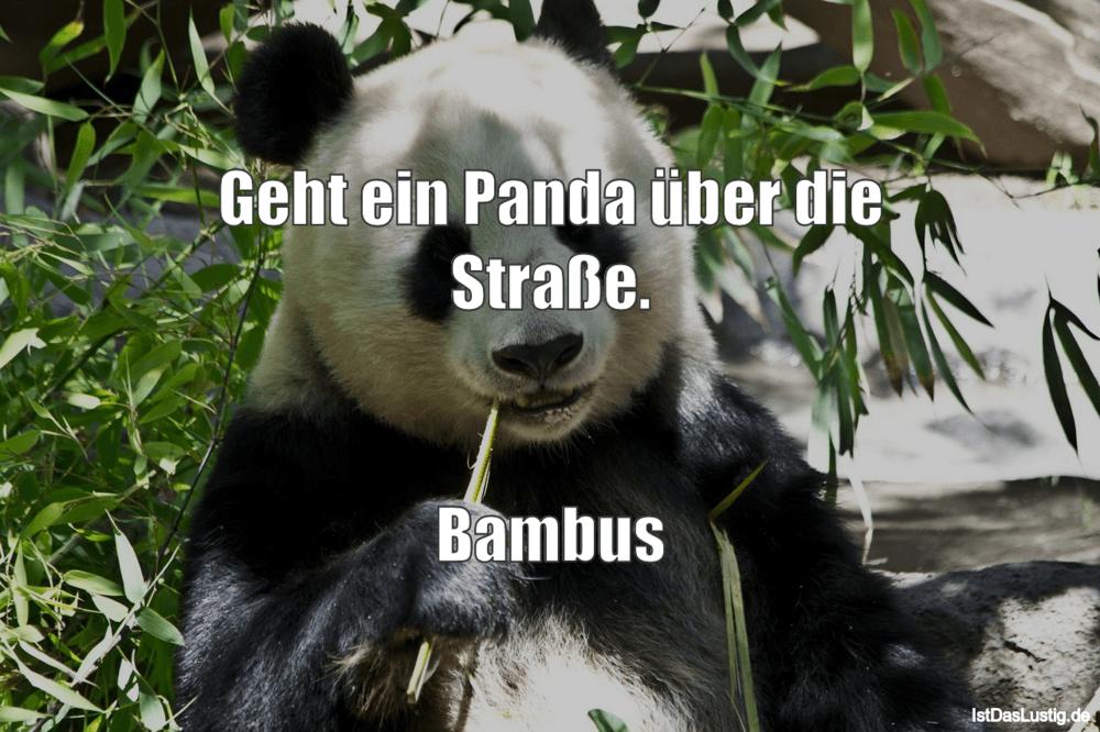 Lustiger BilderSpruch - Geht ein Panda über die Straße.   Bambus