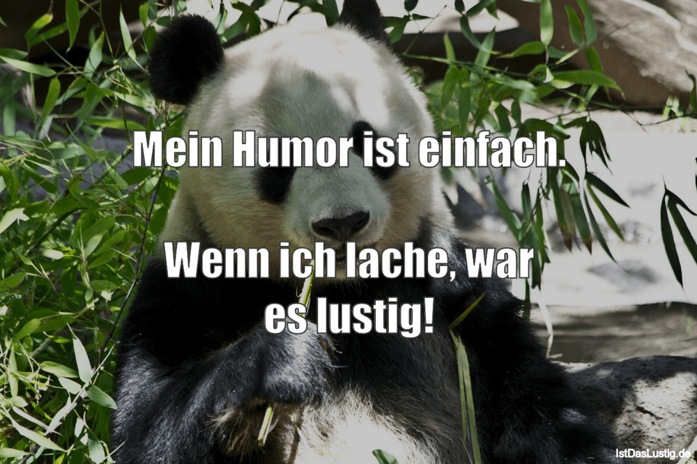 Lustiger BilderSpruch - Mein Humor ist einfach.  Wenn ich lache, war es...