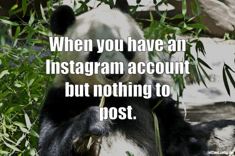 Lustiger BilderSpruch - When you have an Instagram account but nothing...