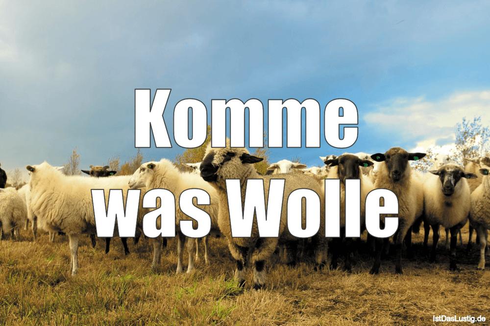 Lustiger BilderSpruch - Komme was Wolle