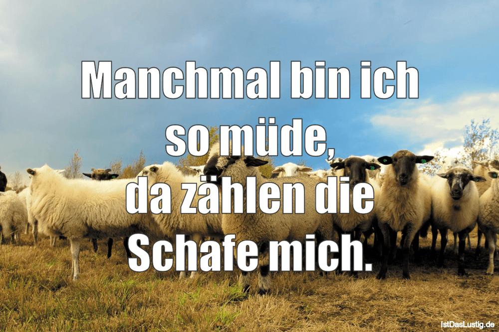 Lustiger BilderSpruch - Manchmal bin ich so müde, da zählen die Schafe...