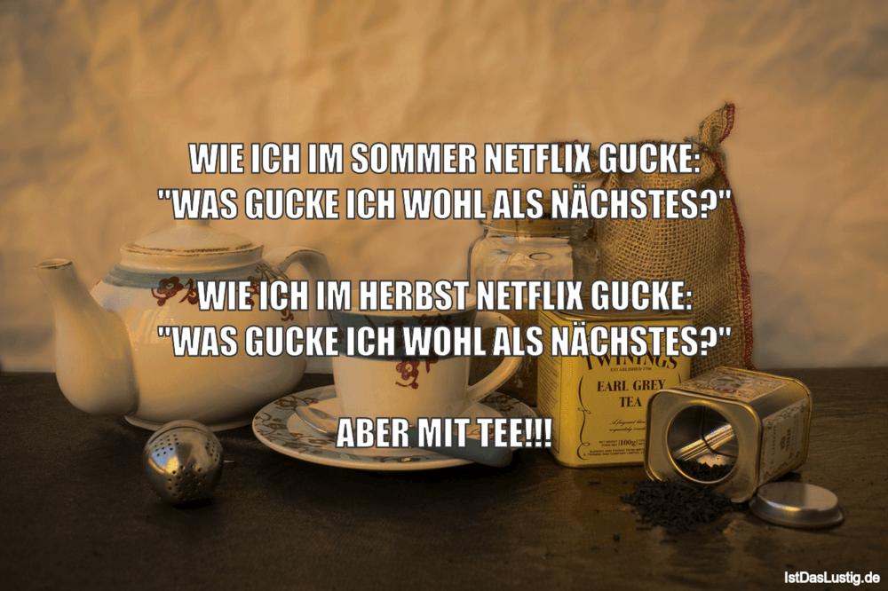 """Lustiger BilderSpruch - WIE ICH IM SOMMER NETFLIX GUCKE: """"WAS GUCKE ICH..."""