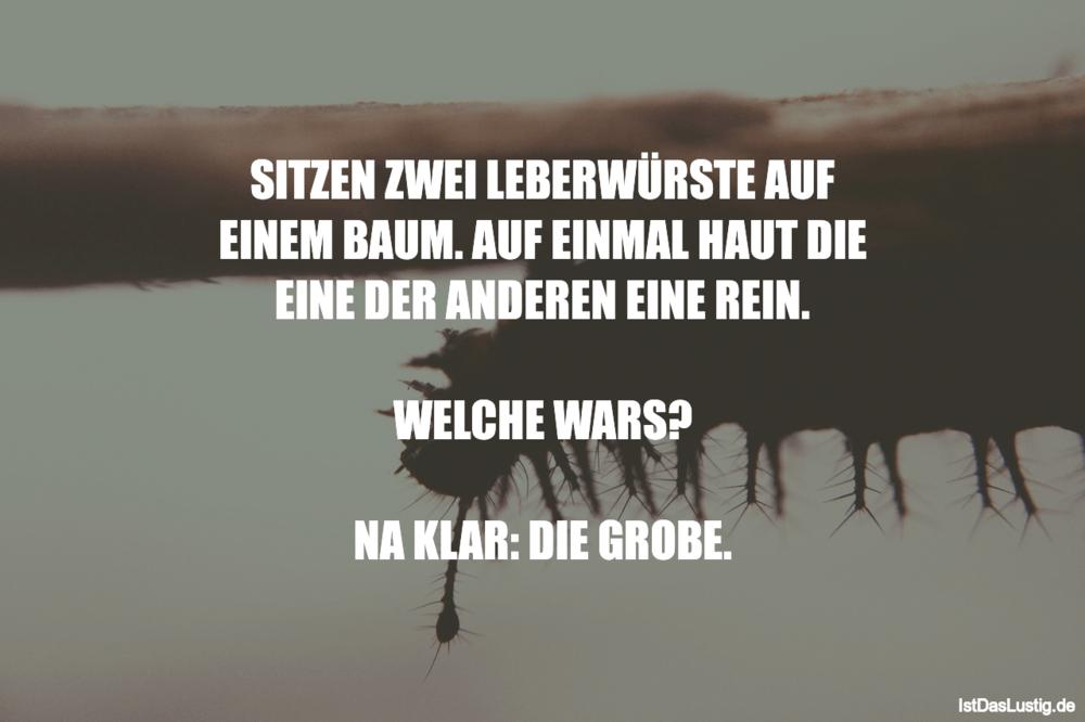 Lustiger BilderSpruch - SITZEN ZWEI LEBERWÜRSTE AUF EINEM BAUM. AUF...